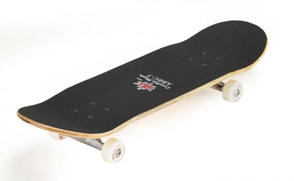 Spartan Skateboard Top Board